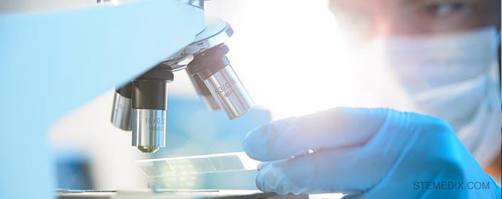 diabetes-bone marrow stem cell research