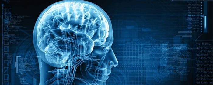 Stem Cells Show Promise for Helping with Functional Recovery Following Stroke