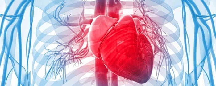 Mesenchymal Stem Cells Improve Function and Quality of Life in Heart Failure Patients