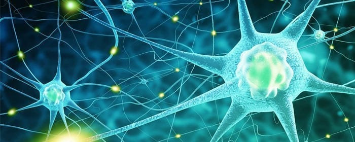 Stem Cells Show Protective Potential for Amyotrophic Lateral Sclerosis (ALS)