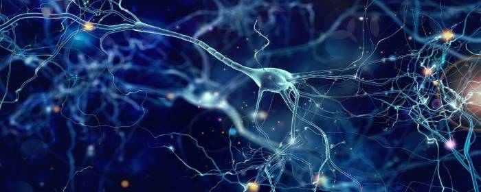 Parkinsons Disease May Go Beyond Just Dopamine