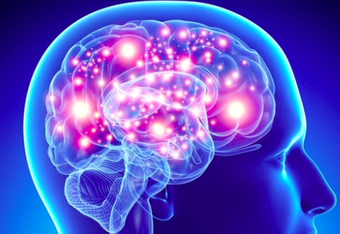 How Can Stem Cells Help Patients with Alzheimer's Disease?