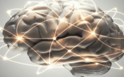 Can Stem Cells Regrow Brain Tissue?